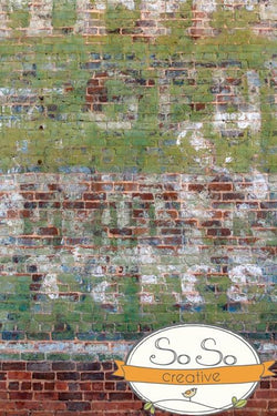 Brick Photography Backdrop - Graffiti Paint Vertical Backdrops Loran Hygema