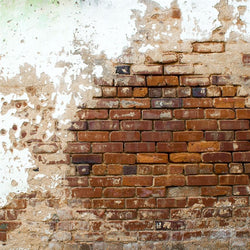 Brick Backdrop Grunge Wall