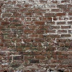 Brick Photo Backdrop - Historic Grunge Discontinued Backdrops Loran Hygema