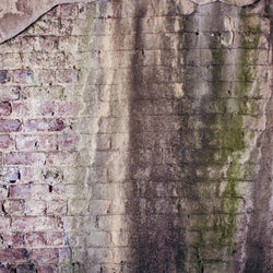 Brick Photo Backdrop Instense - Pastel Haze