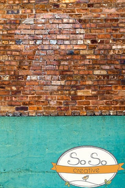 Brick Photo Backdrop - Mushroom Wall Backdrops Loran Hygema