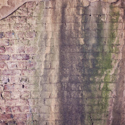 Brick Photo Backdrop - Pastel Haze