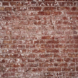 Brick Photo Backdrop - Patchy Backdrops Loran Hygema