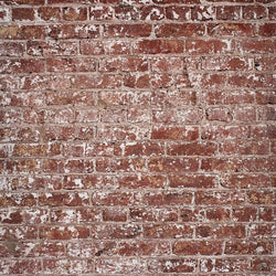 Brick Photography Backdrop - Patchy Vertical Backdrops Loran Hygema