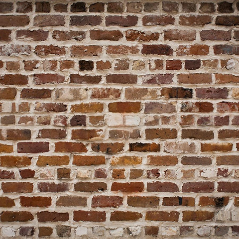 Brick Photo Backdrop - Red Scotch