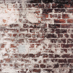 Brick Photo Backdrop - Red and White