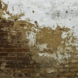 Brick Photo Backdrop - Split Grunge Wall