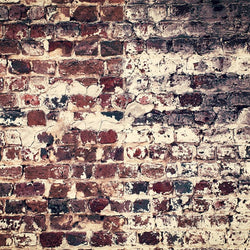 Brick Photo Backdrop - Split Wall Vertical