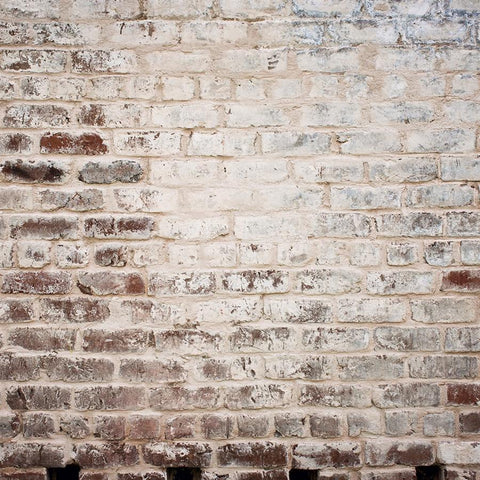 Brick Photo Backdrop - Warm Snowcapped Red Backdrops Loran Hygema
