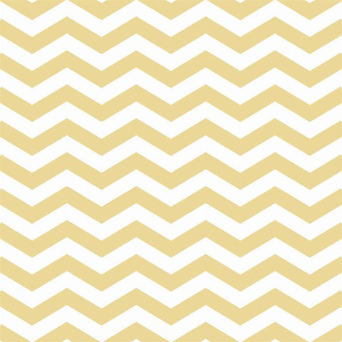Chevron Photo Backdrop in Honey Backdrops Loran Hygema