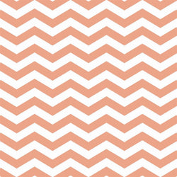 Chevron Photo Backdrop in Melon
