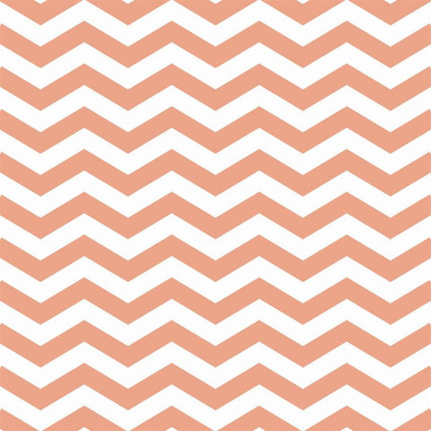 Chevron Photo Backdrop in Melon Backdrops Loran Hygema
