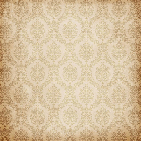 Damask Photo Backdrop - Taupe Grunge