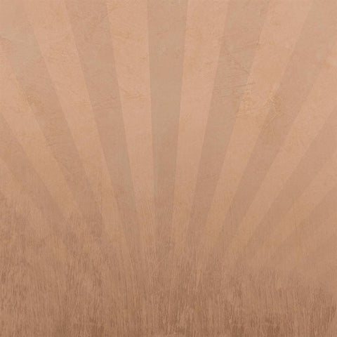 Grunge Backdrop Taupe Sunburst