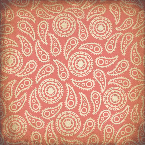 Paisley Photo Backdrop - Vintage Coral Grunge Backdrops,Whats New Wednesday! SoSo Creative