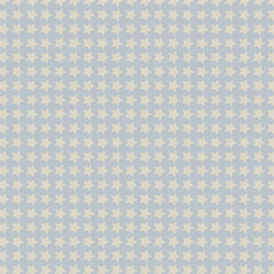Pattern Photo Backdrop - Star Power in Blue and Cream