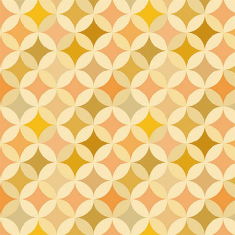 Pattern Photo Backdrop - Vintage Orange Crush Backdrops SoSo Creative