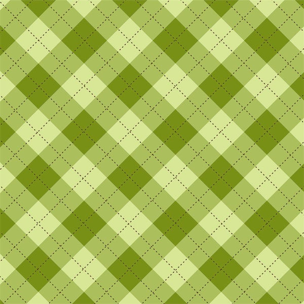 St. Patrick's Day Photo Backdrop - Plaid Light