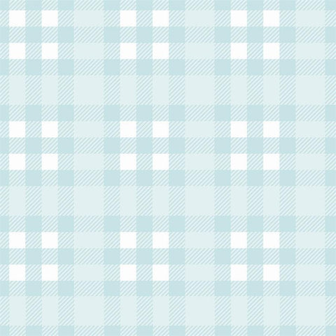 Plaid Backdrop Light Blue
