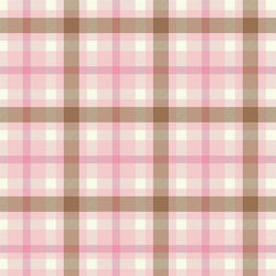 Plaid Backdrop Pink
