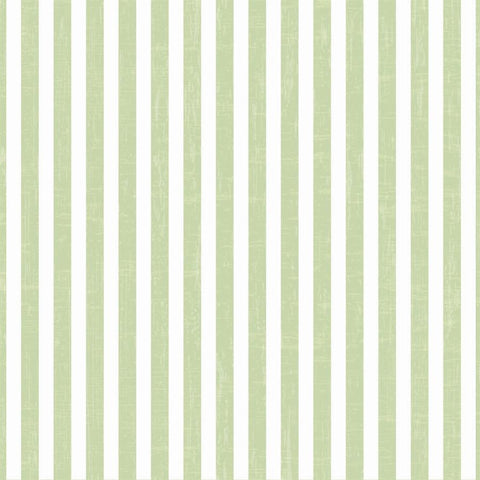 Striped Photo Backdrop - Vintage Green Wallpaper