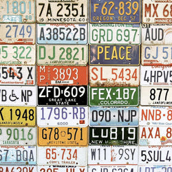 Vintage Photograpy Backdrop - License Plates Backdrops SoSo Creative