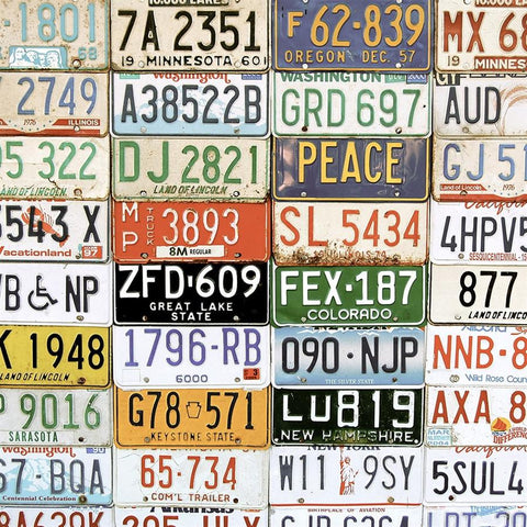 Vintage Photograpy Backdrop - License Plates
