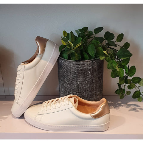 Mollini Session White/Rose Gold Leather Sneakers