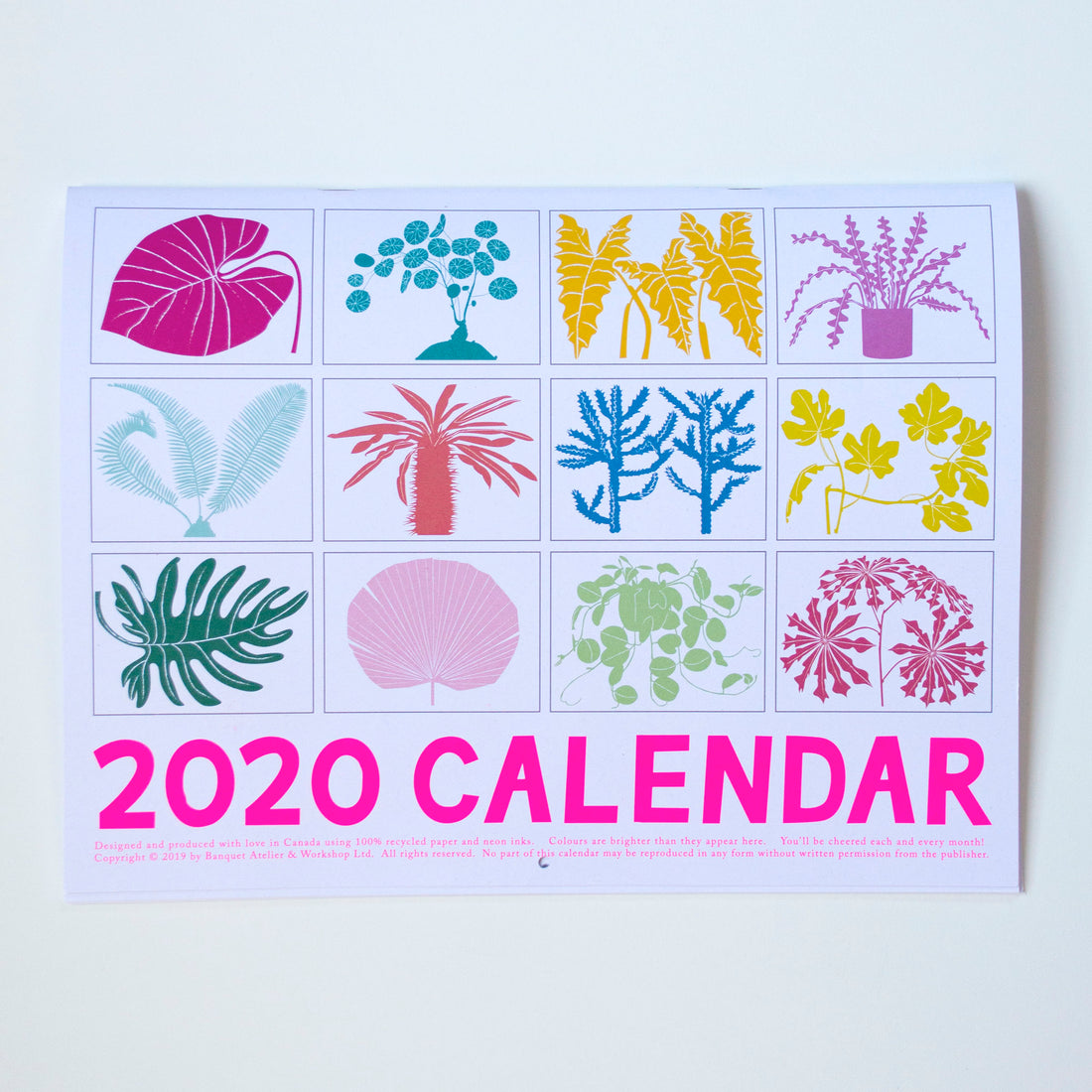 Back view of all twelve months of our 2020 Houseplants calendar