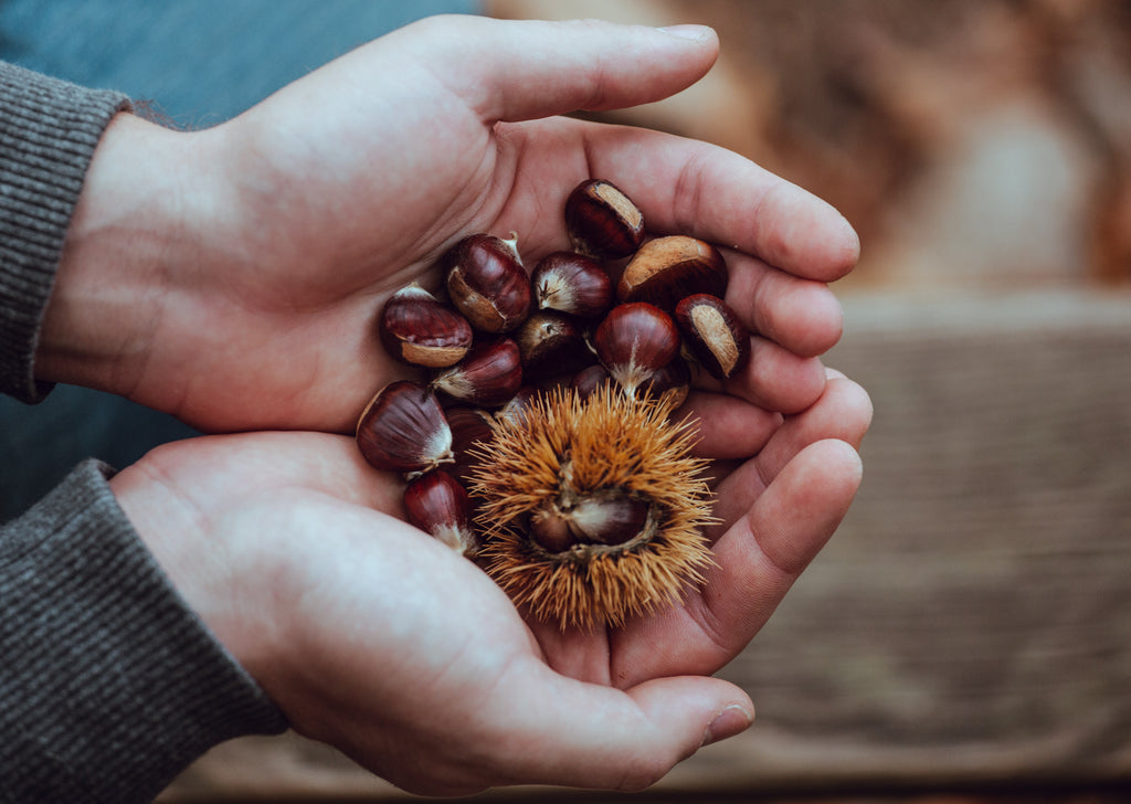 Five Ways To Use Homegrown Nuts