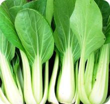 Ching Chang Bok Choy