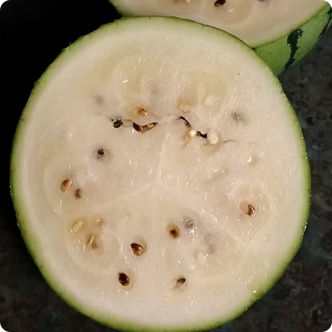 Melon Seeds - Cream of Saskatchewan Watermelon