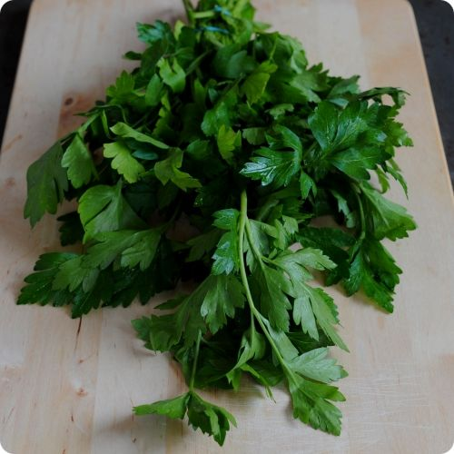 Parsley Seeds - Dark Green Italian