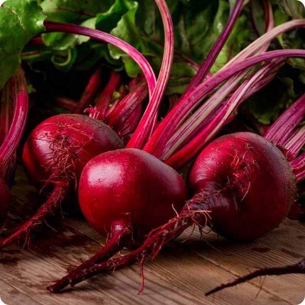 Beet Seeds - Detroit Dark Red