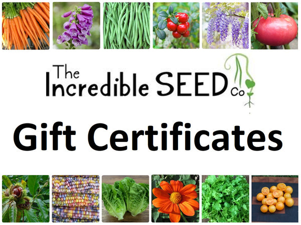 Incredible Seeds Gift Cards!