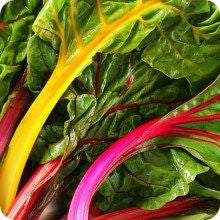 Bright Lights Rainbow Swiss Chard Seed
