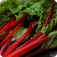 Ruby Red Rhubarb Swiss Chard