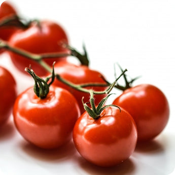 Aosta Valley Cherry Tomato Seeds