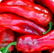 Red Marconi Italian Sweet Pepper