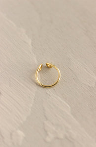 FAUX NOSTRIL RING