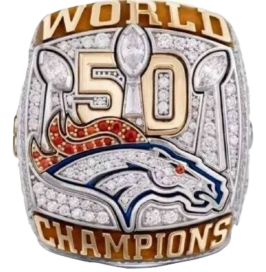 New Arrival 2015 Denver Broncos Super Bowl Championship