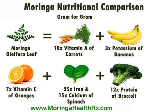 moringa benefits protein