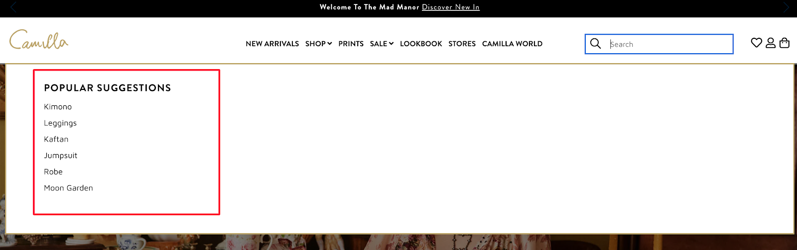 site search online merchandising example