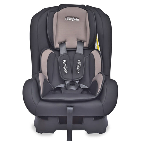 Little Pumpkin - Kiddie Kingdom - Convertible Car Seat (Black Coffee)