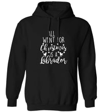 All I want for Christmas is a labrador adults unisex black hoodie 2XL