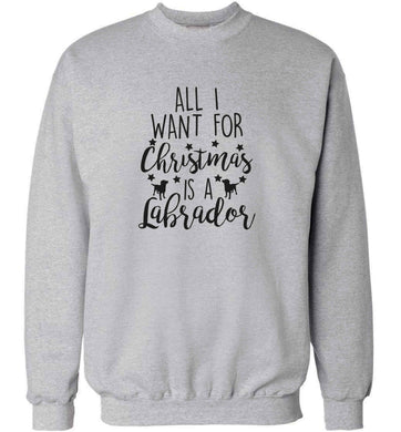 All I want for Christmas is a labrador adult's unisex grey sweater 2XL