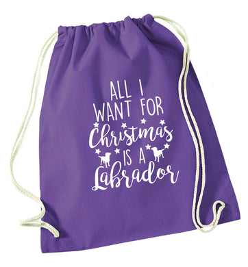 All I want for Christmas is a labrador purple drawstring bag