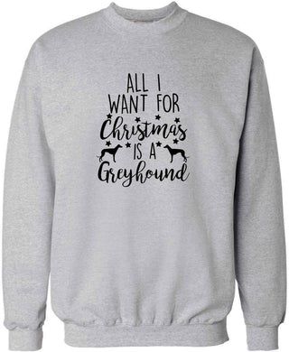All I want for Christmas is a greyhound adult's unisex grey sweater 2XL