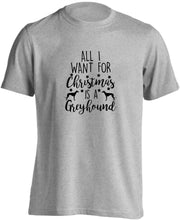 All I want for Christmas is a greyhound adults unisex grey Tshirt 2XL