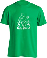 All I want for Christmas is a greyhound adults unisex green Tshirt 2XL